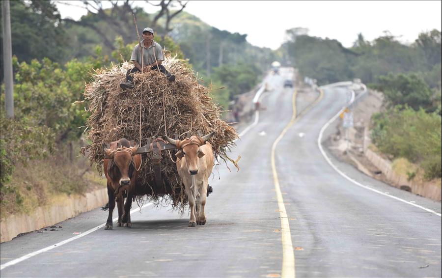 MOP entrega pavimentación de 7.4 kilómetros de Ruta Camaronera Jiquilisco, Usulután